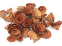 Háncsvirág  narancs 50g/cs