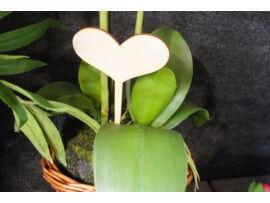 Fa beszúrható szív 17,5cm 5db/csomag