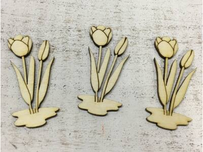 Natúr fa tulipán 7cm 3db/csomag