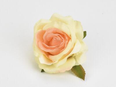 Rózsafej krém barack 5cm