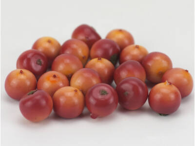 Csipkebogyó piros-narancs 20db/csomag