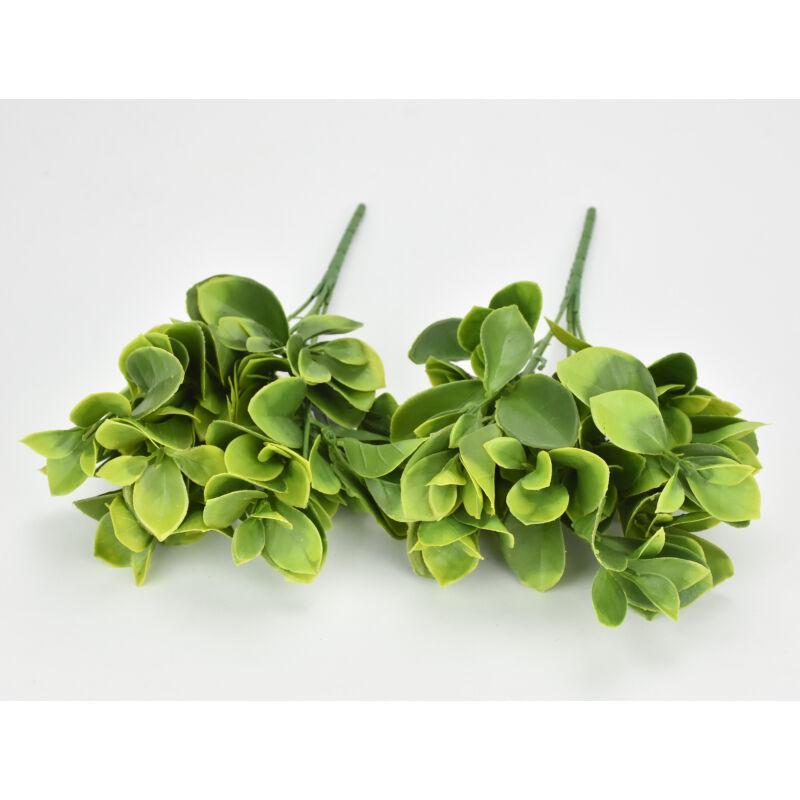Zöld babérmeggy 2db/csomag
